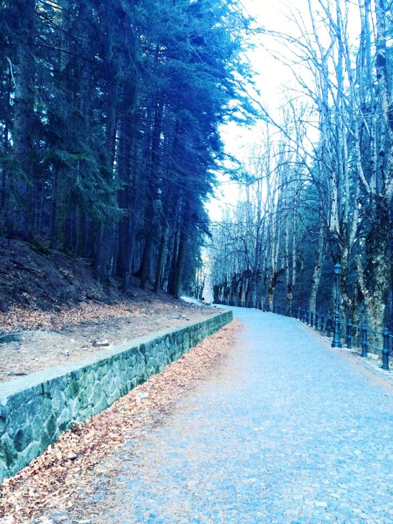 castelul Peles, obiective valea prahovei