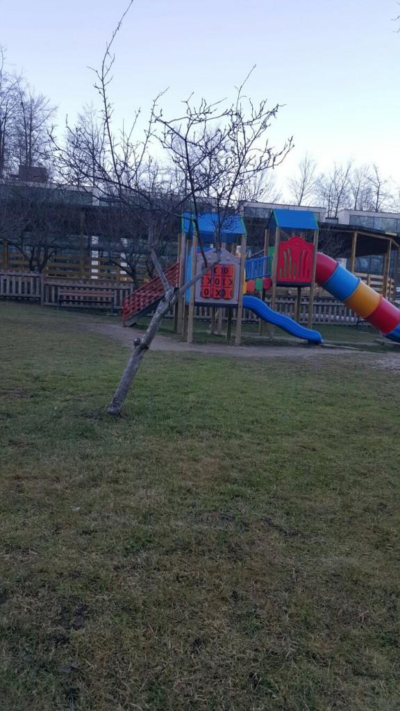 gradina zoologica Brasov