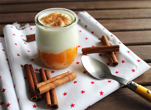 iaurt mango nutribaby