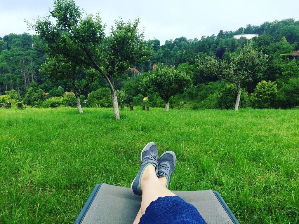 Relaxare si aer curat de munte