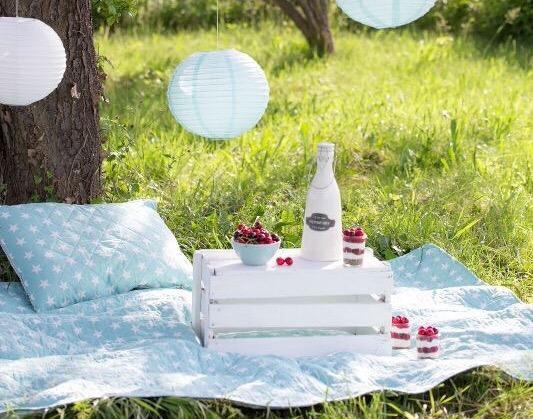 Duminica va invit in parc la un picnic cu distractie din plin!