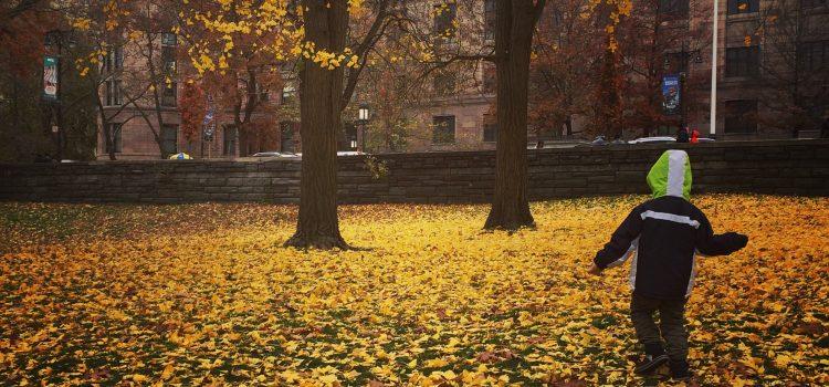 New York – 3 locuri fascinante intr-o singura zi
